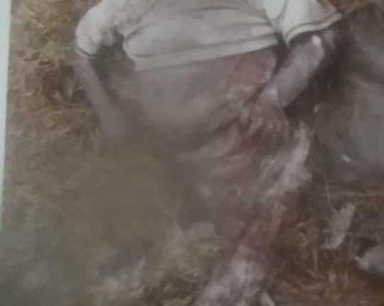 جثة الطفل احمد من تعز